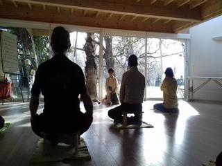 Activité Qi Gong